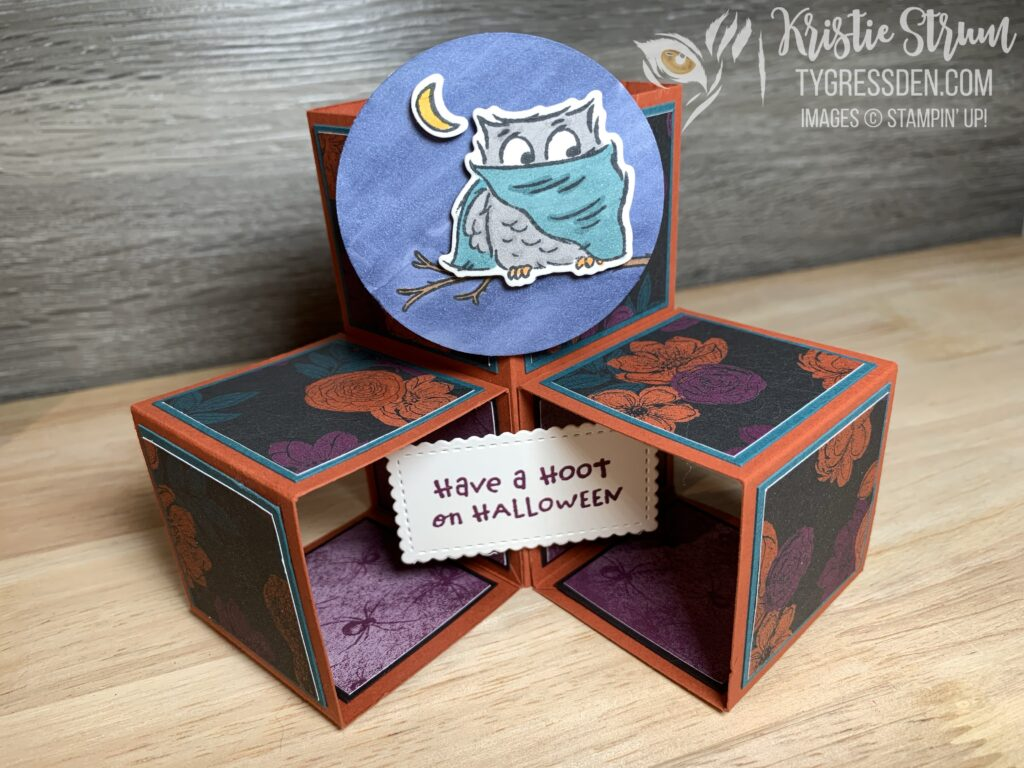 Have a Hoot Pop-Up Cube Card 1